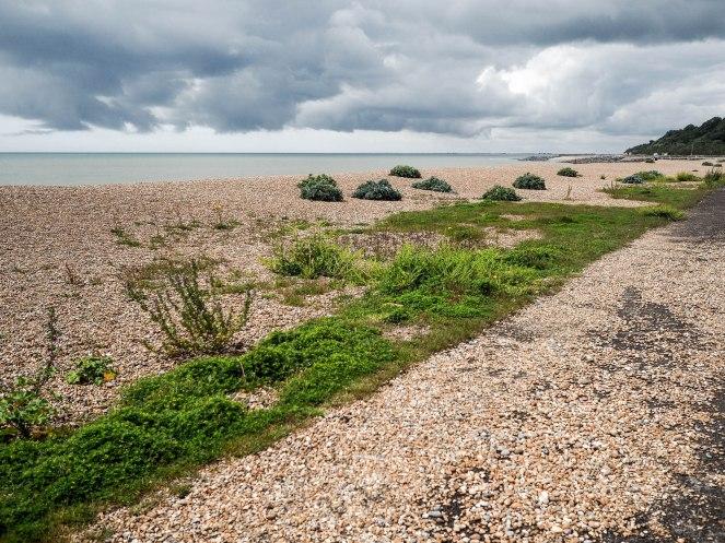 Stony faced beach of beauty
