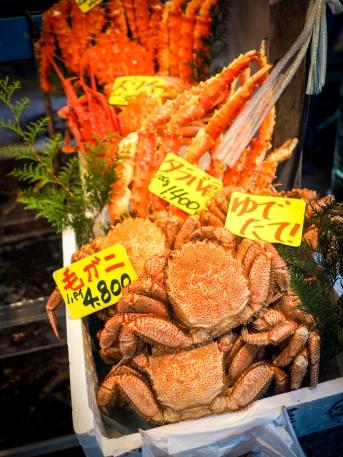 Poodle-sized. Tsukiji fish market, Tokyo