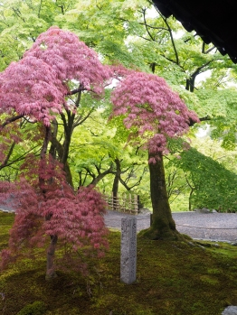Zen and the art of natural colours.