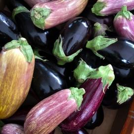 Because... purple. Meagen's colours.